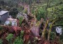बागेश्वर में मकान पर विशालकाय पेड़ गिरने से महिला और बच्चे की मौत, सात लोग घायल