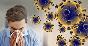 उत्तराखंड में कोरोना 24 घंटे में मिले 164 नए संक्रमित, दो की मौत, 272 मरीज हुए ठीक