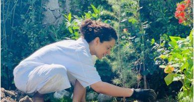 कंगना रनौत ने घर के आंगन में लगाए नए पौधे, तस्वीर शेयर कर बोलीं-आज मैंने 20 पेड़ रोपे…