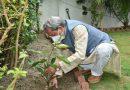 सीएम ने किया अपने जीएमएस रोड स्थित भागीरथीपुरम आवास पर वृक्षारोपण