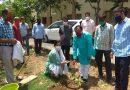 मंत्री धन सिंह रावत ने किया दून विश्वविद्यालय परिसर में पौधरोपण