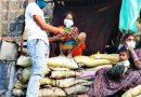 भाजपा कार्यकर्ताओं ने बांटी मदद सामग्री