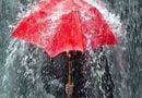 अतिवृष्टि और कम बारिश के लिए जिम्मेदार है जंगलों की आग