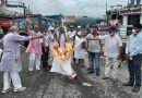 राज्य आंदोलनकारियों ने प्रदेश सरकार का पुतला फूंक जताया विरोध