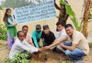 शिक्षक भगत सिंह रावत की स्मृति में बनाई वाटिका, रोपे वृक्ष