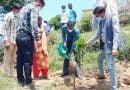 उच्च प्रजाति के फलदार वृक्ष लगाकर कास्त को बढ़ावा दें: डीएम